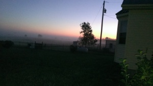 Oct. 25, 2014 Foggy morning 7-12 to 7-15 am East and West (5)