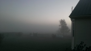 Oct. 25, 2014 Foggy morning 7-25 am (1)