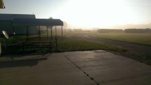 Oct. 25, 2014 Foggy morning east at the horse pen 8-57 am (1)