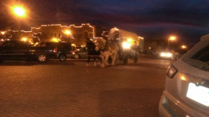 November 28, 2014 Holton's lighted Christmas Parade  (7)