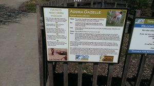 Apri 5, 2015 Easter Sunday quick trip to the zoo and train ride  (21)
