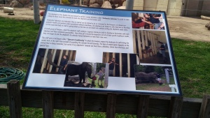 Apri 5, 2015 Easter Sunday quick trip to the zoo and train ride  (25)