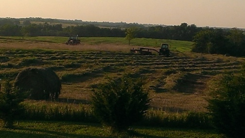 July 23-25, 2015 Finally our hay is getting mowed, raked and baled (4)