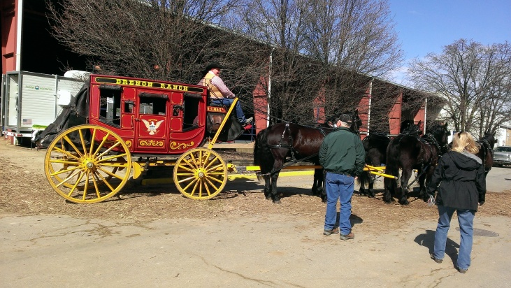 2016 February 26. Stagecoach pulled by Morgan Percheron mix horses (1)