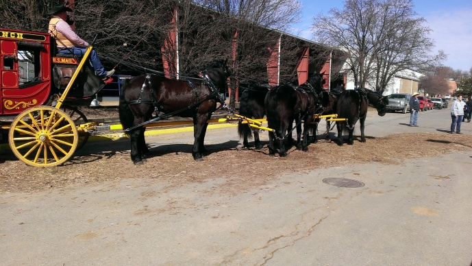 2016 February 26. Stagecoach pulled by Morgan Percheron mix horses (2)