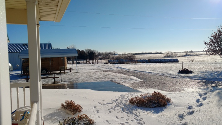 december-18-first-day-the-sun-has-shined-for-several-days-got-ice-then-snow-the-last-two-days-3